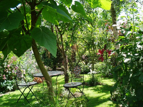 Belper Open Gardens